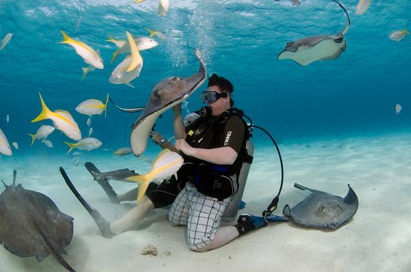 8 Best Snorkeling Spots in the Caribbean to Feel the Best Adventure